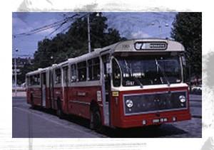 Bus 7 200px